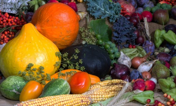 myths about healthy food